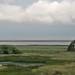 Etosha National Park impressions, Namibia - IMG_3521_CR2_v1