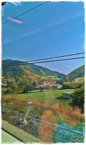 Landscape from the train
