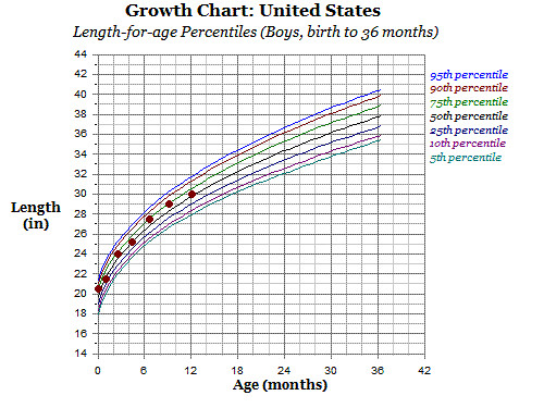 growth chart 12 months -length