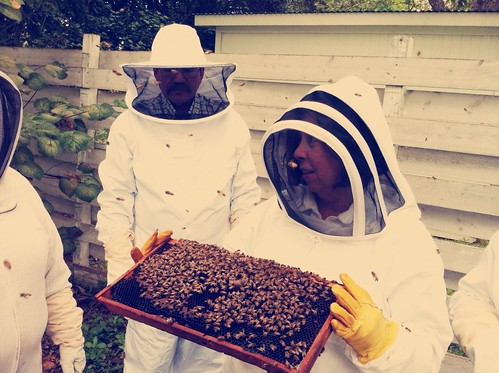 Resuming bee class in fall 2012
