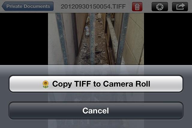 Camera Roll-4838