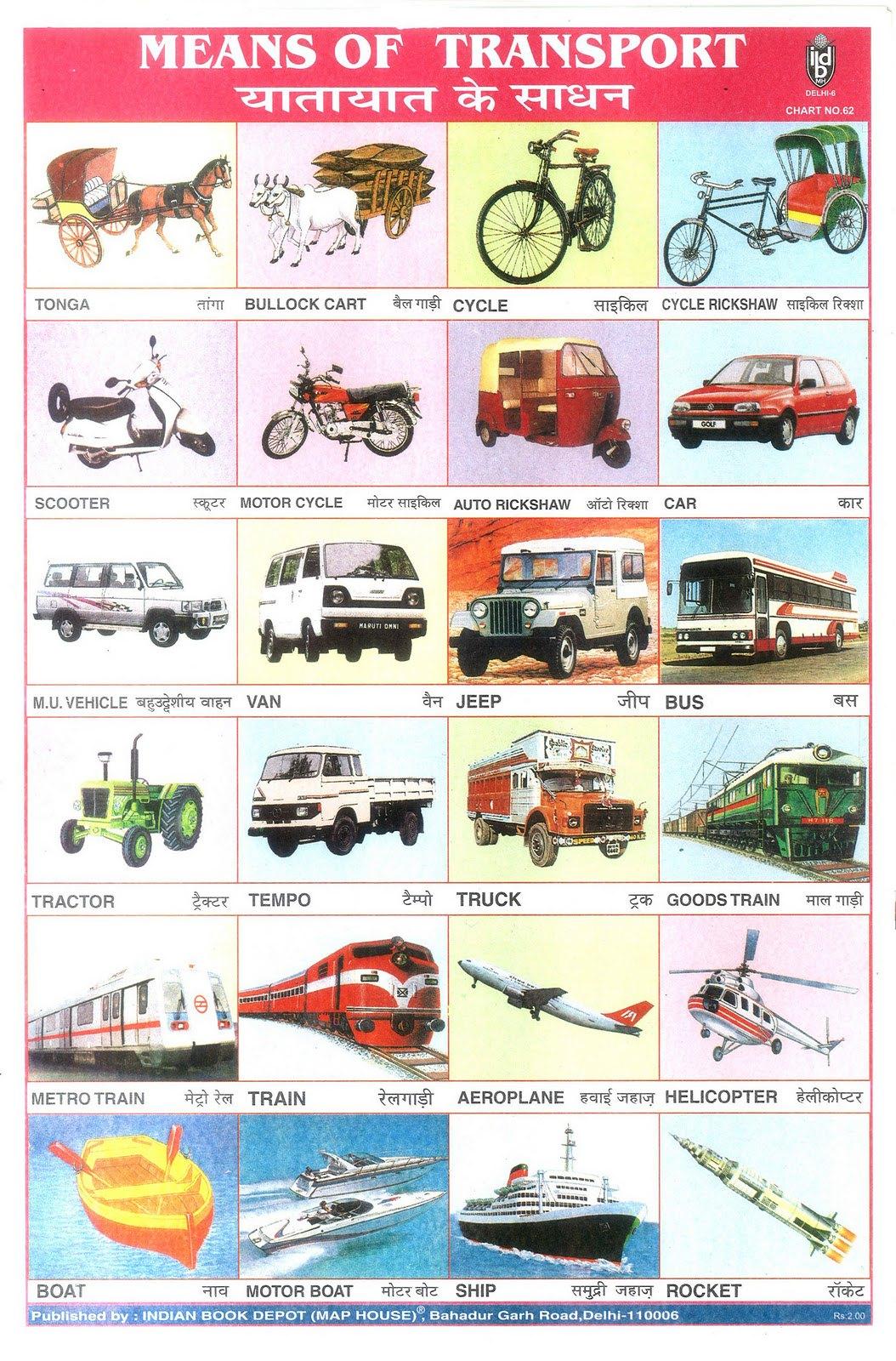 Means Of Transport Flickr