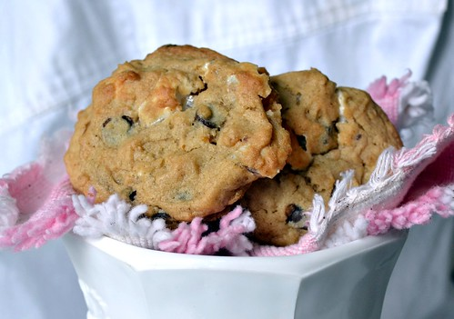 cookies cheesecake 8-5=12 324