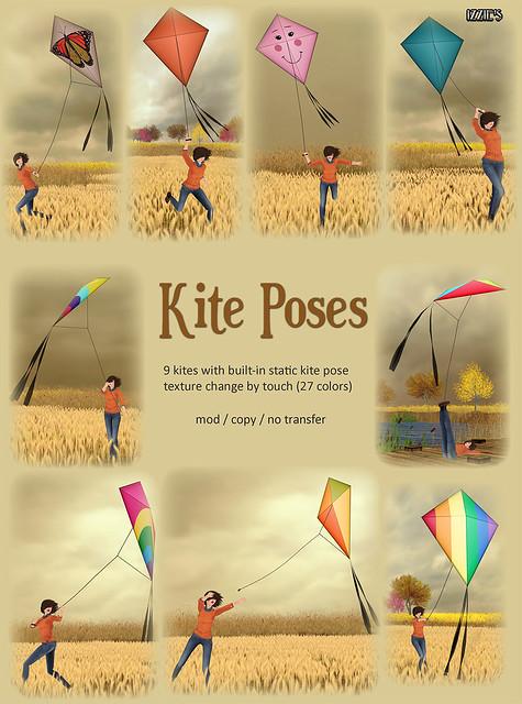 Kite Poses