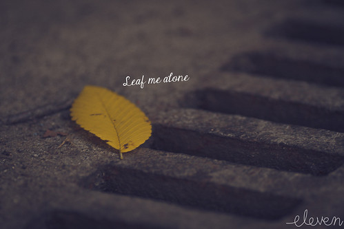 Leaf by Eleven ~