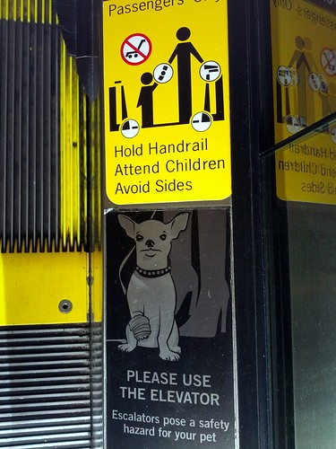 Chihuahua hazard warning, escalator, mall, Glendale, Los Angeles, California, USA