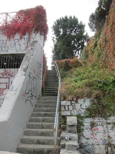 Steps to Balaclava St