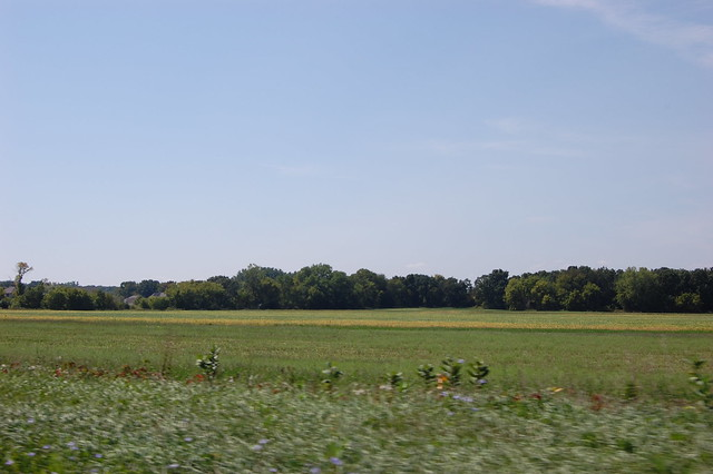 View of farmland from the convertible