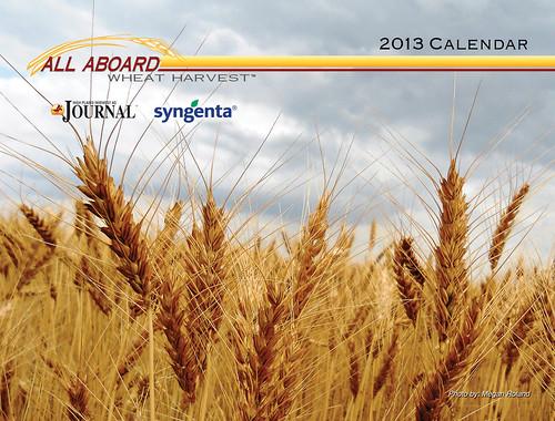 2013 AAWH Calendar