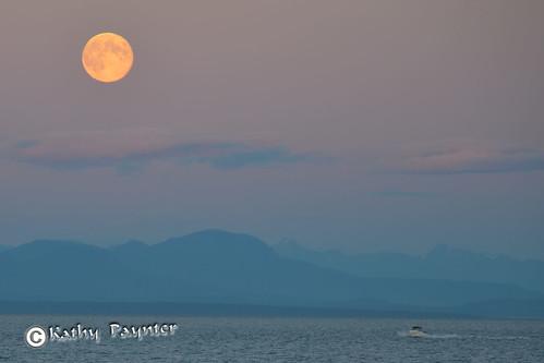 Blue Moon Fisherman by kathypaynter.com