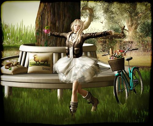 jasmine b flowers for neve 061012