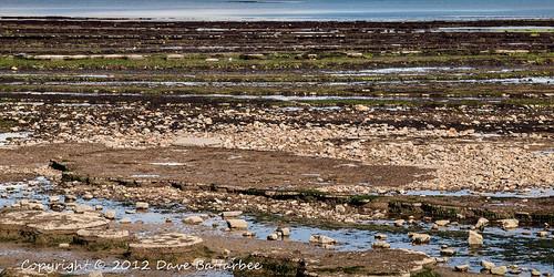 Low Tide Rocks