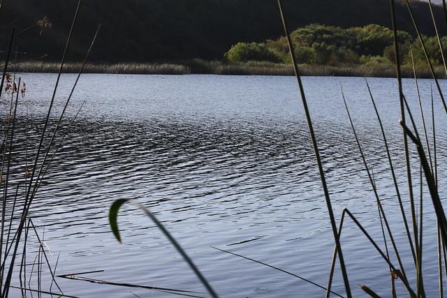 Matilija Reservoir, near Ojai