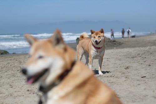 22 September 2012 Bootz on the beach