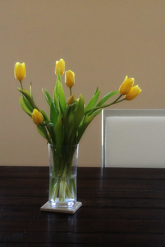Yellow Tulips3