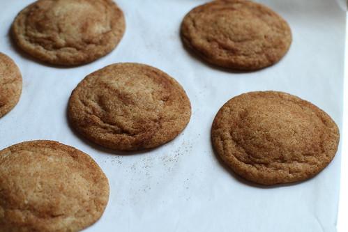 freshly baked snickerdoodles