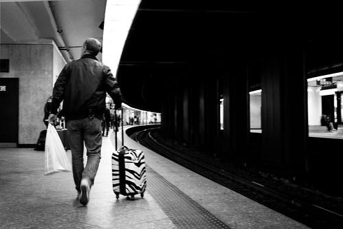 Zebra Station (Gare de Bruxelles-Central) - Photo : Gilderic