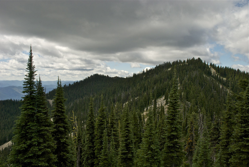 Photo taken from USFS trail 541 in the Cataract roadless area