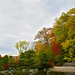 Anderson Japanese Gardens 003