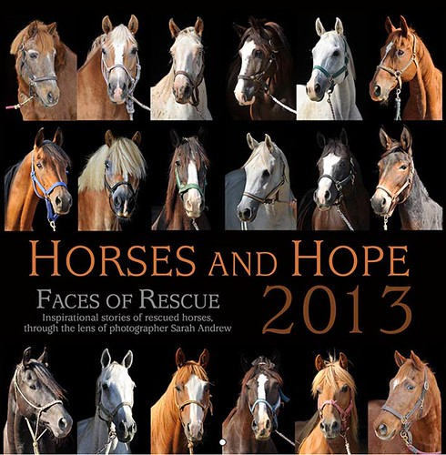 Electronic press kit for Horses and Hope: Faces of Rescue