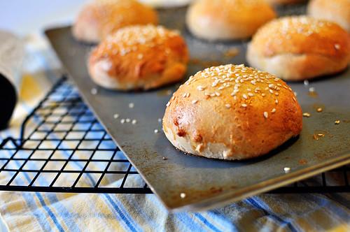 Hamburger Buns 1