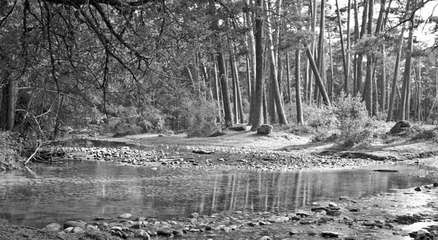 Río Eresma #7