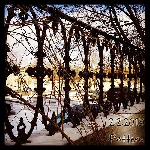 Feb 2 - pattern #fmsphotoaday #fence