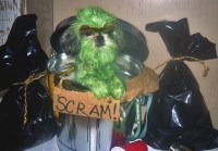 Oscar the Grouch Dog Costume | Flickr - Photo Sharing!