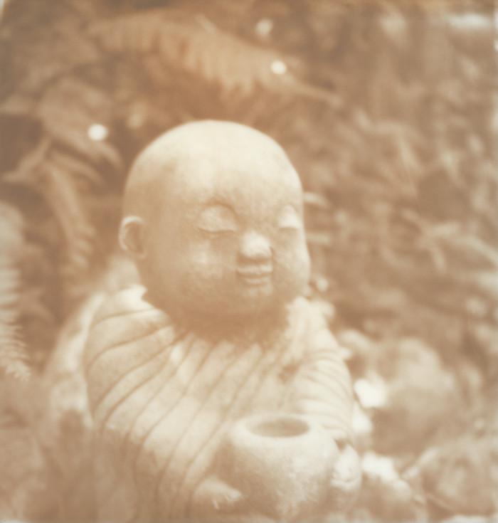 sanctuary buddha