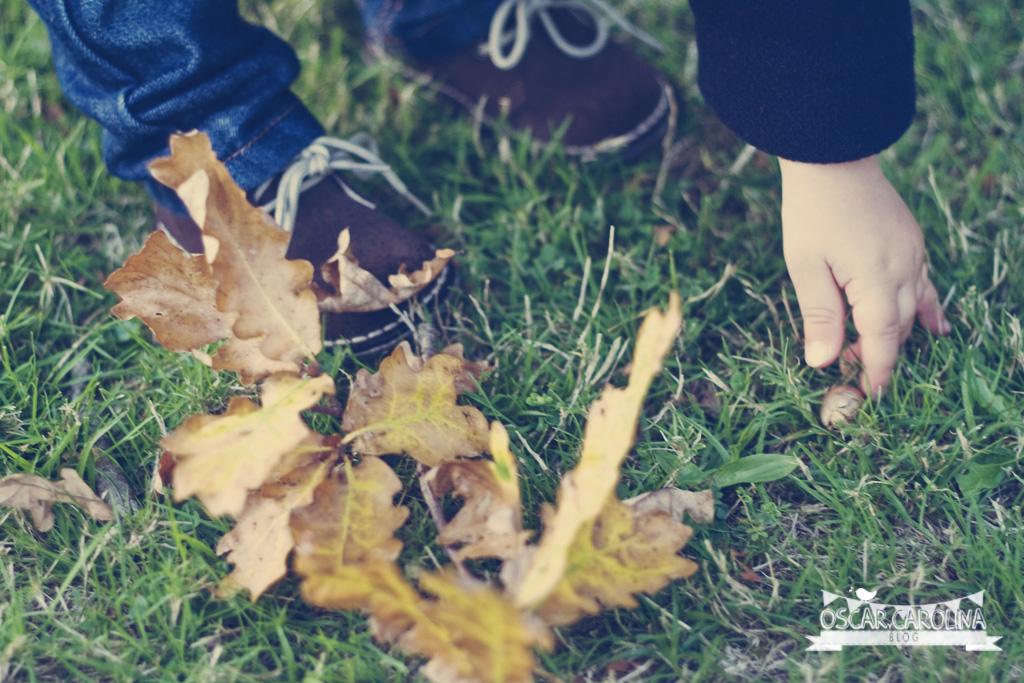 recogiendo hojas secas