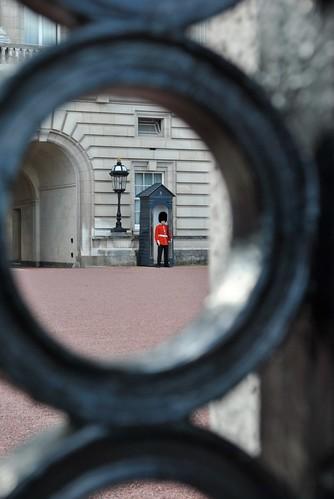 London - Buckingham Palace - Guard
