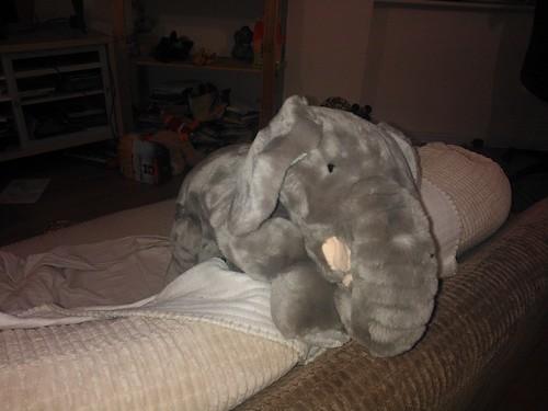 The very hungry elephant