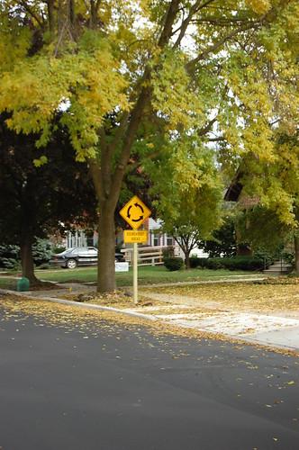 Finished Neighborhood roundabout