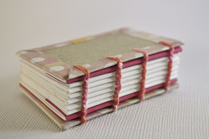 WIP (biscuit books)