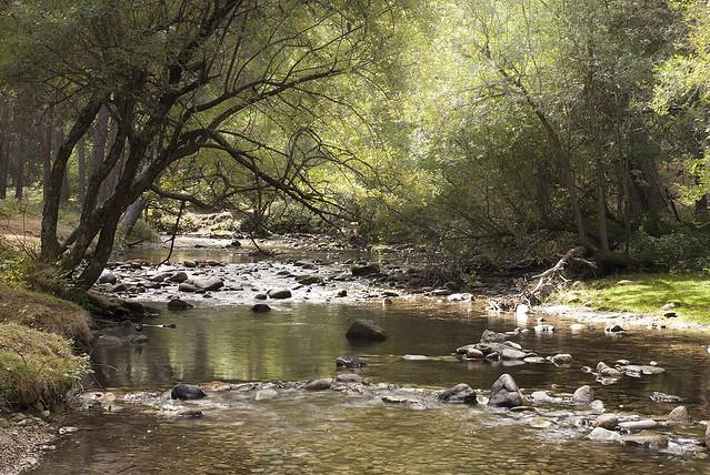 Río Eresma #1