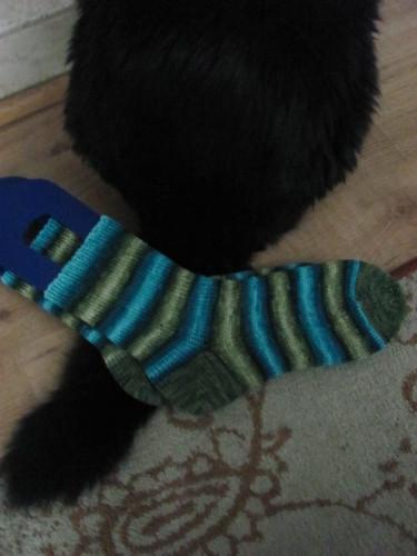 tfa socks + cat butt