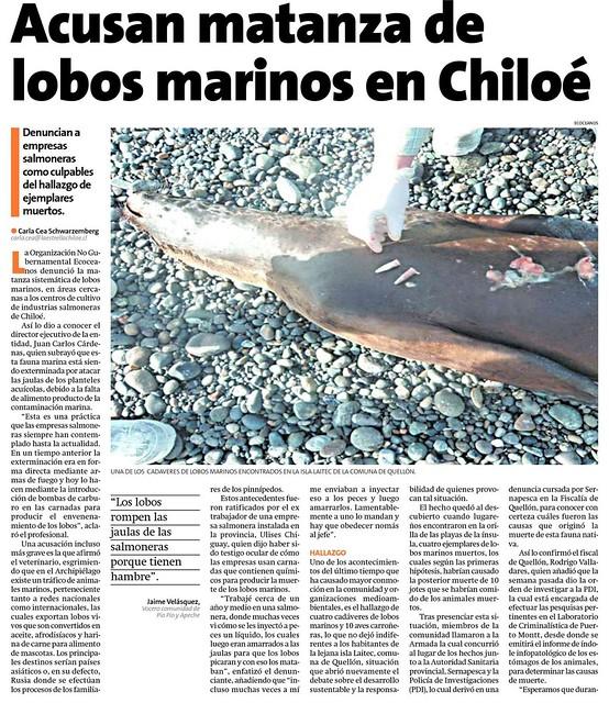 matanza de lobos marinos