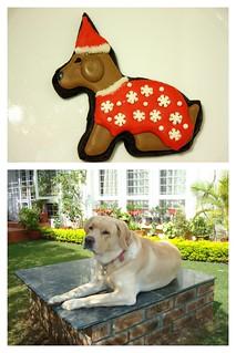 2012 12 Christmas Animal  Cookies (1)