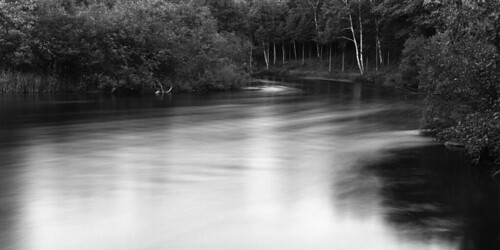 Manistee River, near Sharon, Michigan