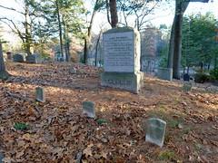 Thoreau family plot