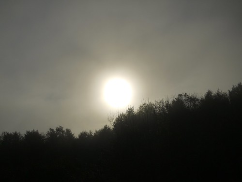 Sunrise through fog