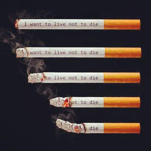 Please Stop smoking!! ارجوك توقف عن التدخين by Lau-Fung