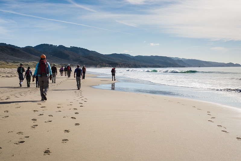 hiking along the limantour beach, point reyes national seashore