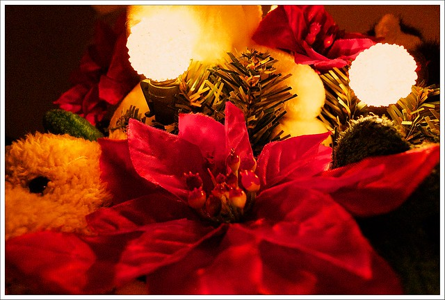 (347/366) Christmas Warmth