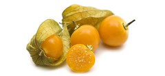 Physalis (Incan Berries)