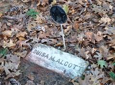 Louisa May Alcott's grave