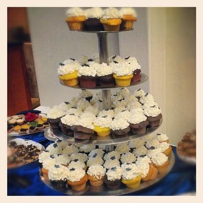 So Many Cupcakes!