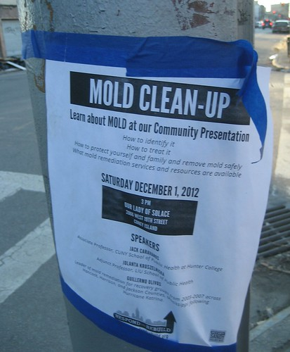 Nold Clean-Up