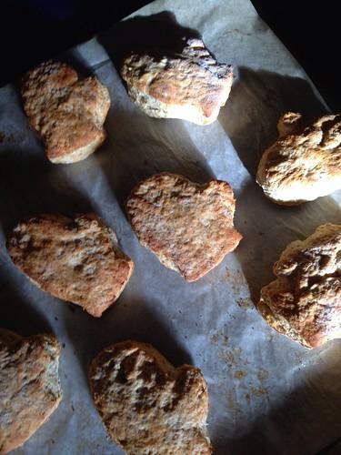 Mitten Biscuits