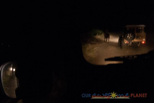 Mt. Bromo Sunrise Experience-6.jpg